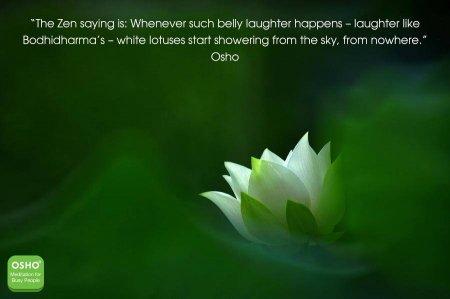 Belly Laughter Kindspring Org